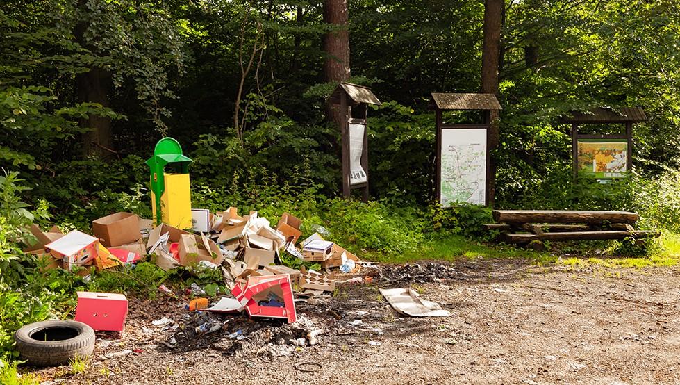 Land Remediation Asbestos Safety