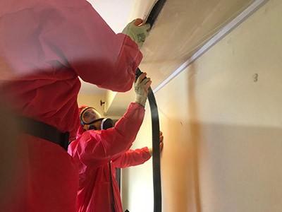 asbestos removal specialist